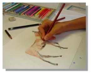 Atelier Taiccap' Dessin Delphine 2