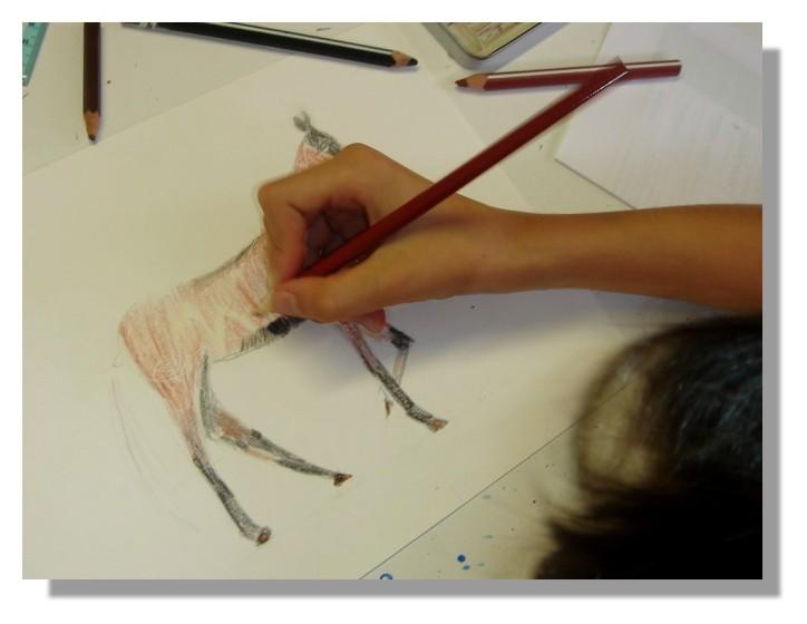 Atelier Taiccap' Dessin Delphine 3