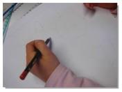 Lucie Pastels Tigreaux 2