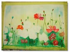 Rose-Marie Aquarelle Coquelicots 7